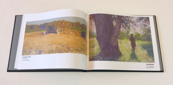 Dan Schultz portfolio book, hardcover with 20 pages of high-quality photos of artwork.
