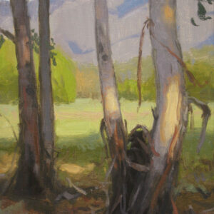 Eucalyptus Grove, giclee print by Dan Schultz. Eucalyptus trees near a meadow with a mountain backdrop.