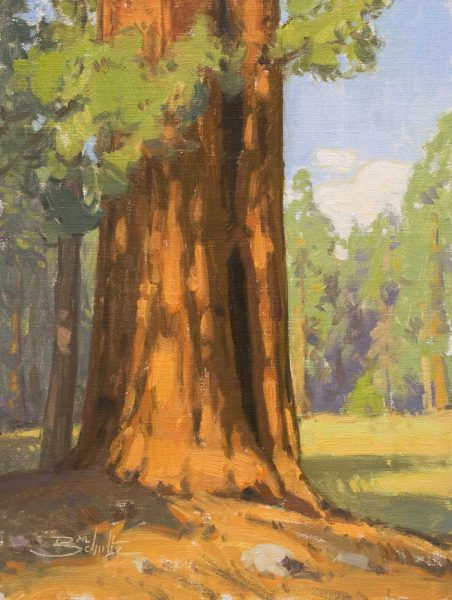 Giant Sequoia (Sequoia National Park) • 12x9 inches • Oil on Linen Panel • Available from Dan Schultz Fine Art in Ojai, California