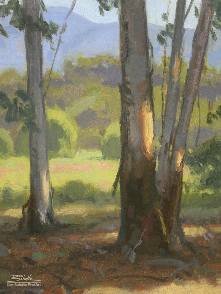 Through the Eucalyptus, giclee print by Dan Schultz. Eucalyptus tree trunks with by patches of sunlight and a meadow, trees and mountains behind.