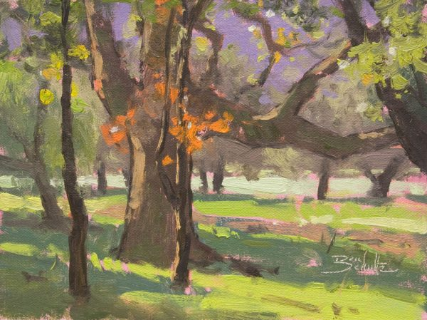 Sunlit Woods •6x8 inches •Oil on Linen Panel •Available from Dan Schultz Fine Art in Ojai, California