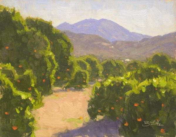 Ojai Orchard •11x14 inches •Oil on Linen Panel