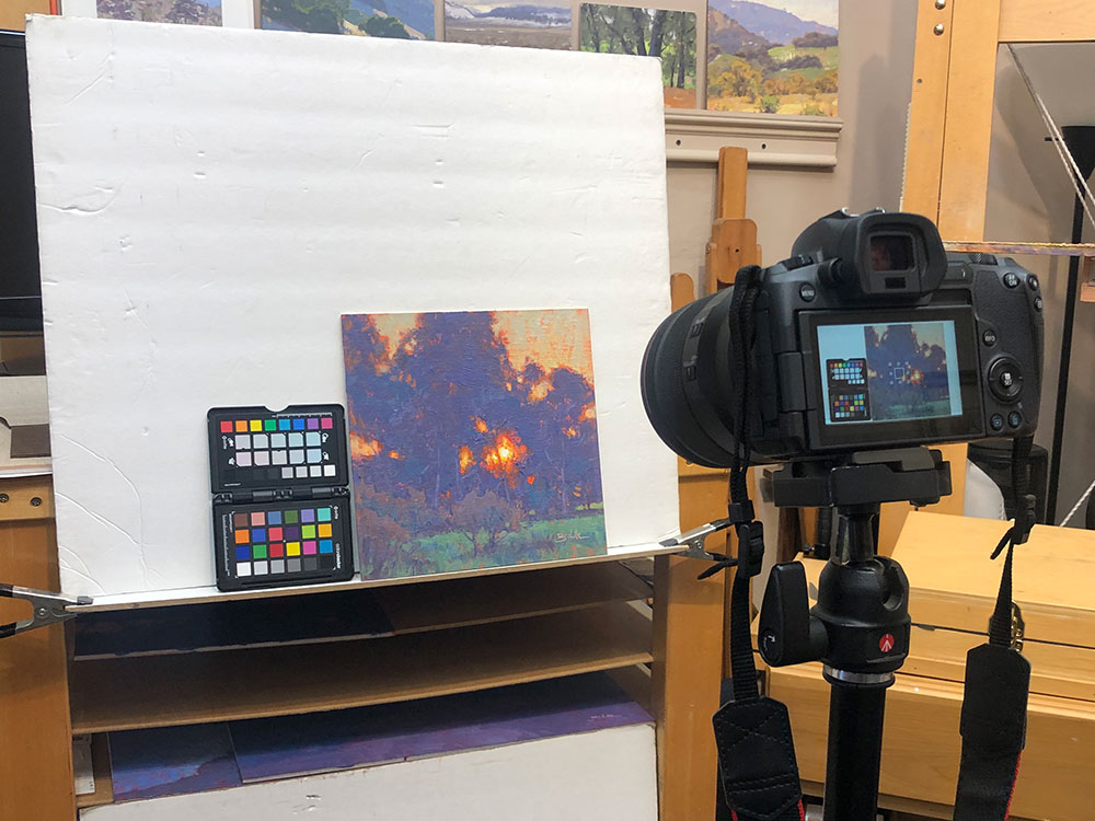 Photographing paintings with the Color Checker Passport swatch card