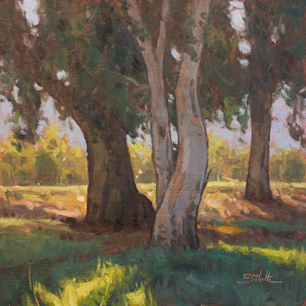 Quiet Shade •12x12 inches •Oil on Linen Panel •Available from Dan Schultz Fine Art in Ojai, California