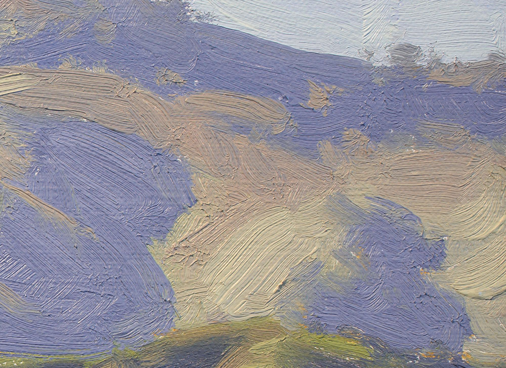 Detail of Spring Shadows, 9x12 plein air oil painting by Dan Schultz.