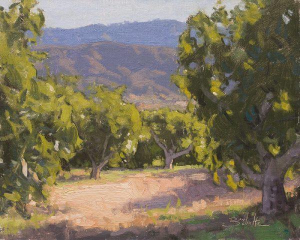 Sunlit Avocado Trees •11x14 inches •Oil on Linen Panel •Available from Dan Schultz Fine Art in Ojai, California