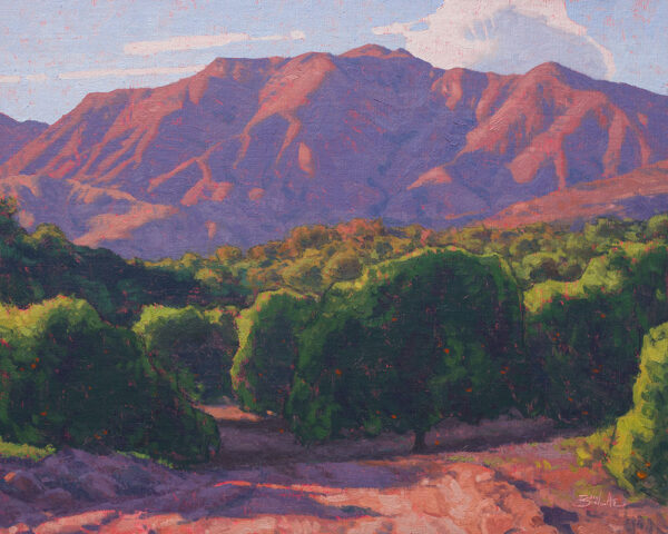 Orchard Evening •16x20 inches •Oil on Linen Panel •Available from Dan Schultz Fine Art in Ojai, California
