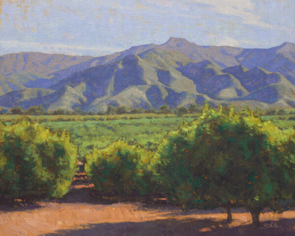 Orchard Overlook • 16x20 inches • Oil on Linen Panel • Available from Dan Schultz Fine Art in Ojai, California