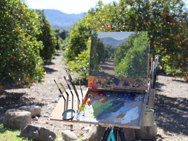 Plein air painting by Dan Schultz in an Ojai citrus orchard.